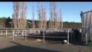 Embedded thumbnail for Tim Mills: Canterbury Jockey Club, Riccarton Park